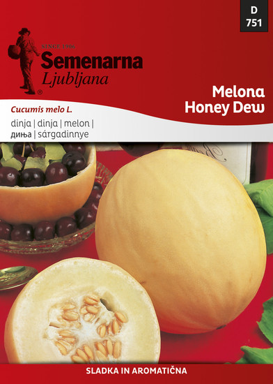 Melona Honey dew - Medena rosa